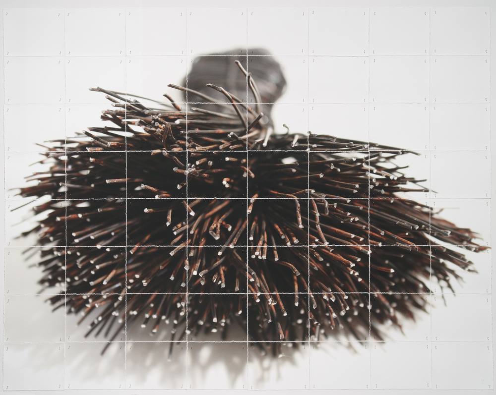 "Brush, 2013, torn and pinned photo of wire work, 40"" x 50"""