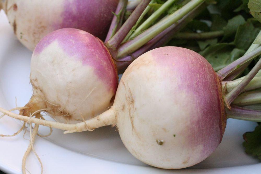 rutabaga low-carb recipes