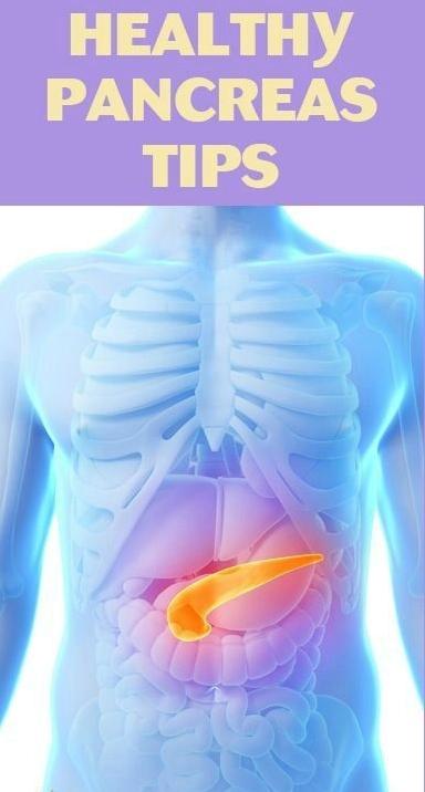 healthy Pancreas.jpg