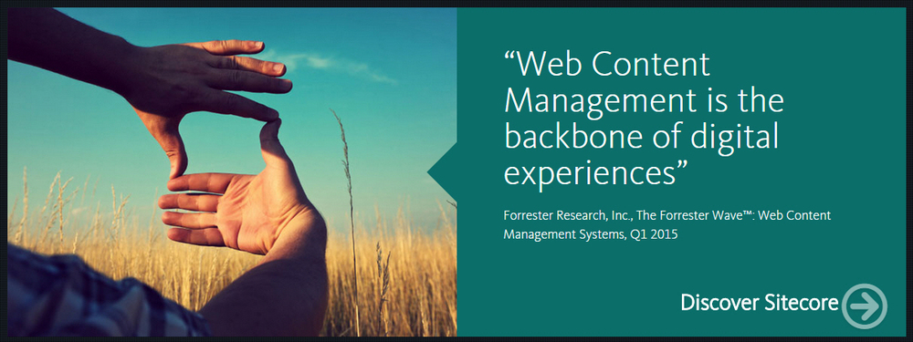 Forrester Research, Inc., The Forrester Wave : Web Content Management Systems, Q1 2015""