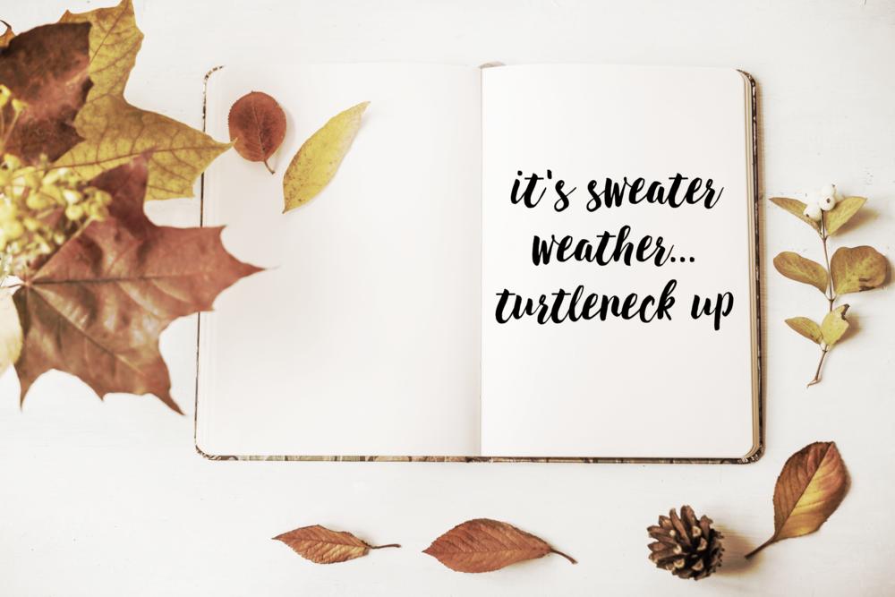 sweaterweatherblogphoto.png