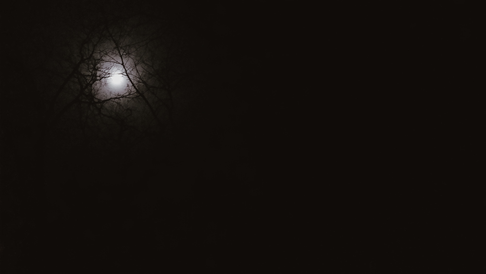a poem about the moon