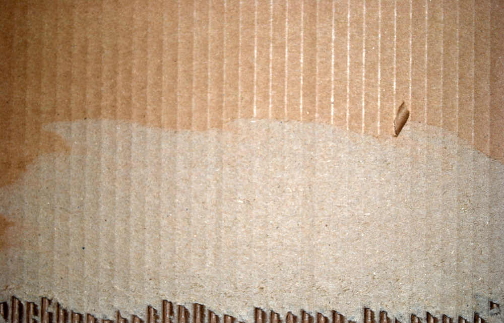 cardboard_ribbed_bottom.jpg