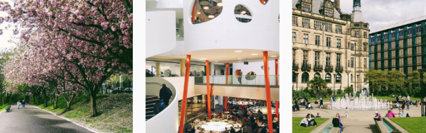 Sheffield University's Instagram features beautiful images from all around campus.