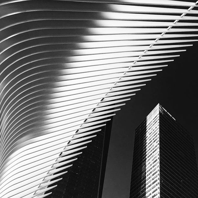 #newyorkcity #newyork #transportationhub #oneworldtradecenter #blacknwhite #blackandwhitephoto #blacknwhite_perfection #noiretblanc