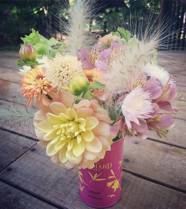 Is it time for a tea party? #summerflowers