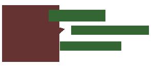 Shane logo 2.png