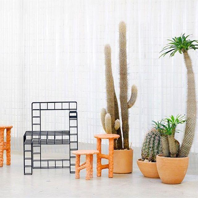 INSPO 🌵 Phillip Lim store in LA