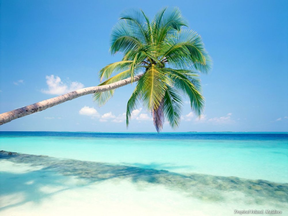 july-beach-lashes