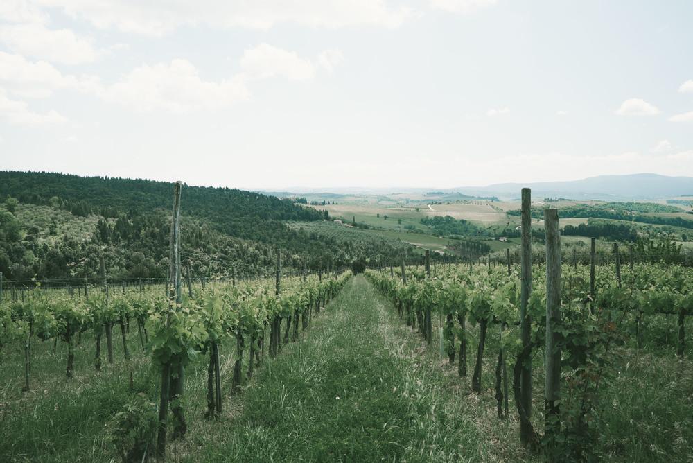 TuscanyCorrectEdit (14 of 37).jpg