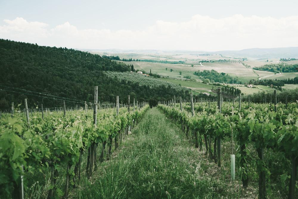 TuscanyCorrectEdit (23 of 37).jpg