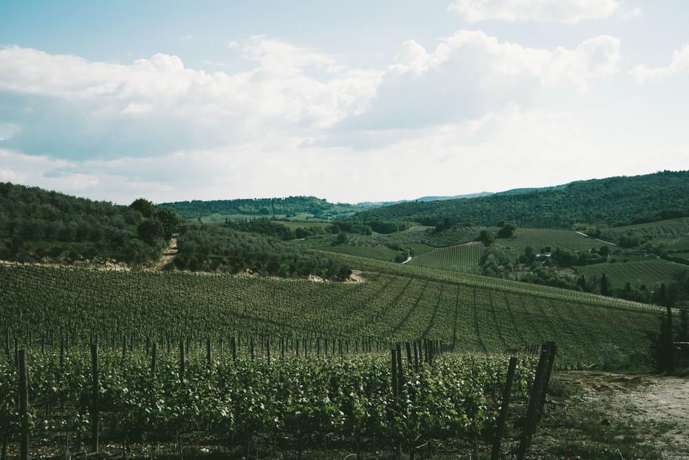 TuscanyCorrectEdit (28 of 37).jpg