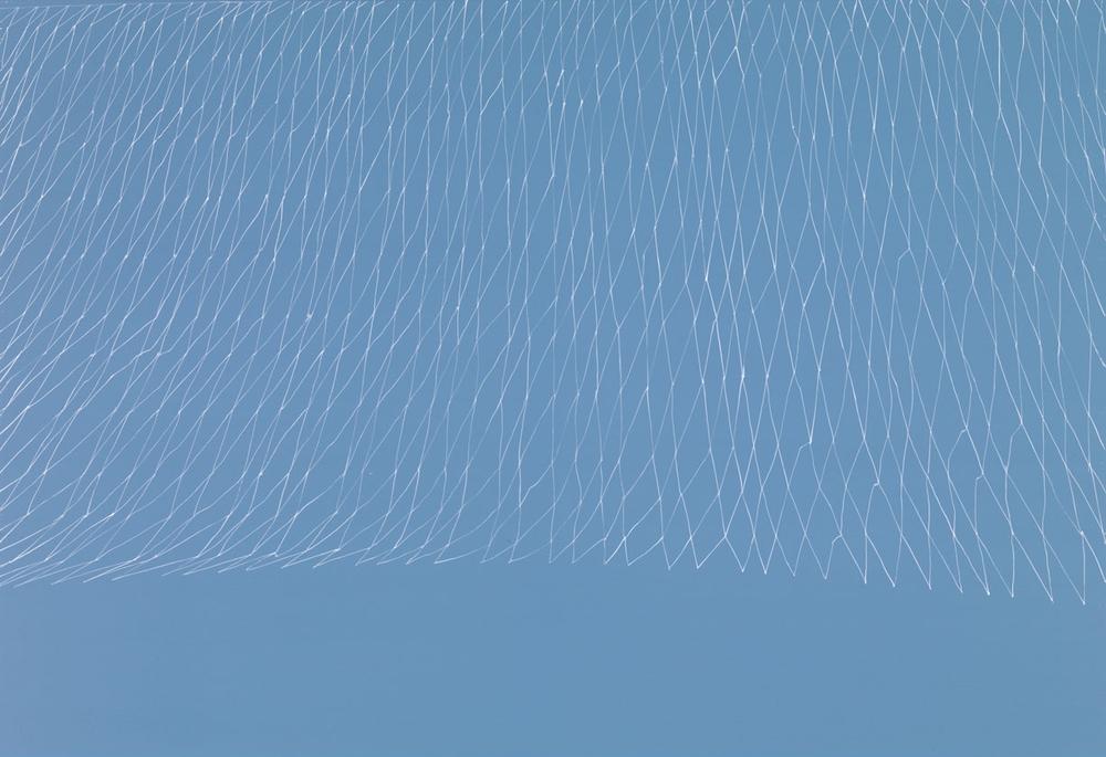 Way, Light Blue Net