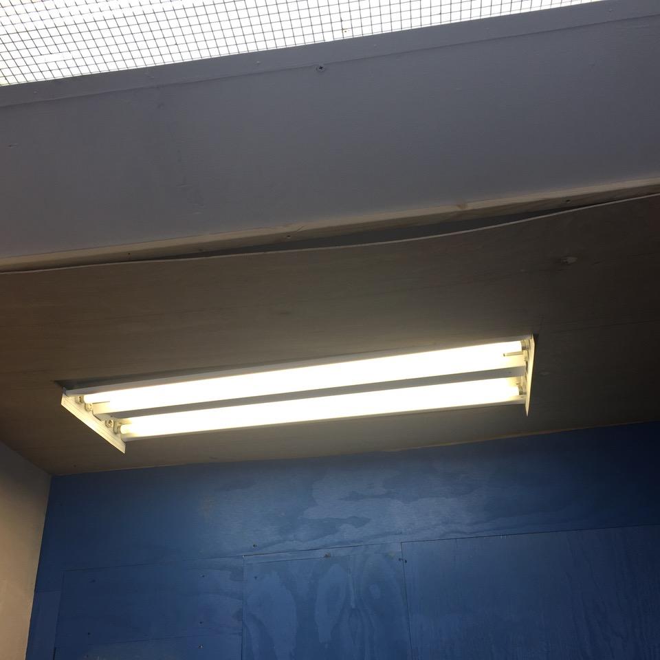 18_ceilingIMG_5671.jpeg