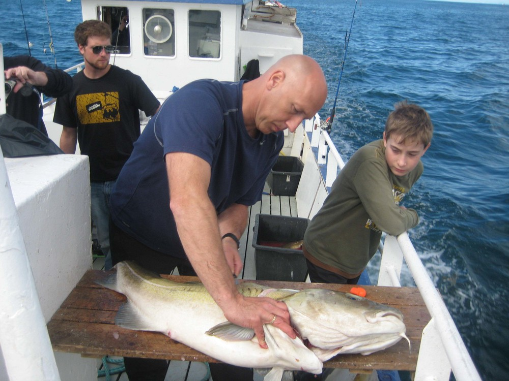 Fish being Filleted at Sea during a Sea Angling trip in Reykjavik, Iceland