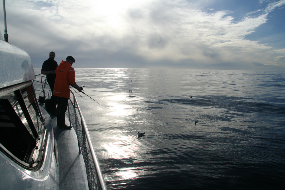 Guests fishing during a Sea Angling trip in Reykjavik, Iceland
