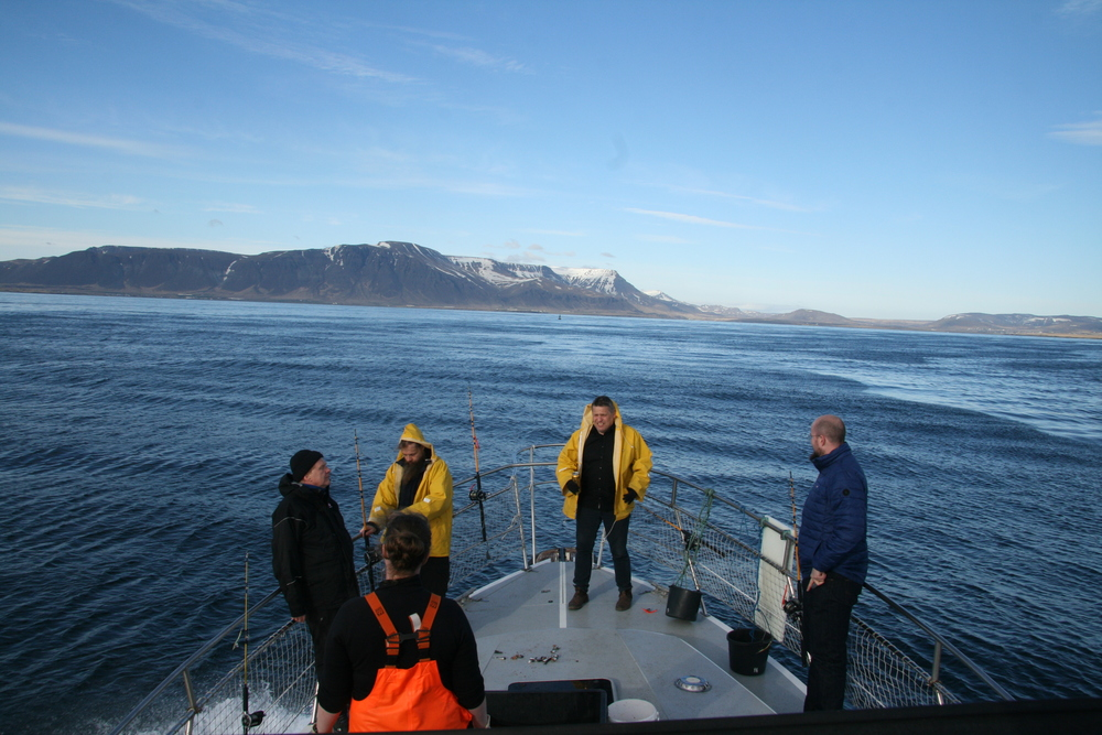 Guest on a Fishing (Sea Angling) tour in Reykjavik, Iceland