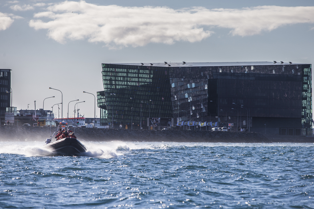Harpa Concert Hall by RIB boat sightseeing tour