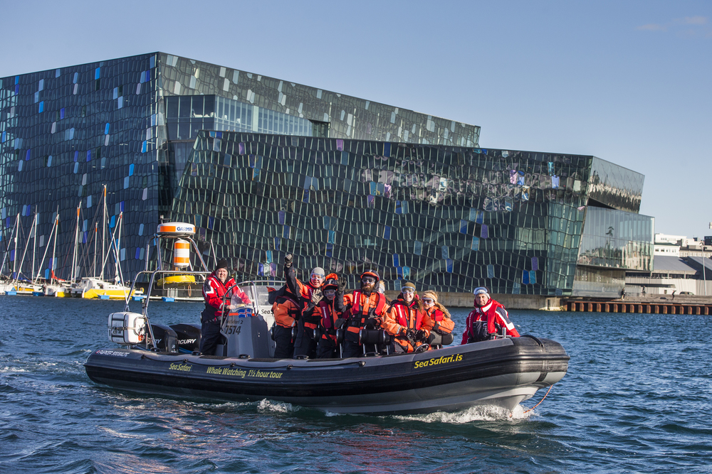 Sightseeing tour of the Reykjavik coastline including Harpa Concert Hall