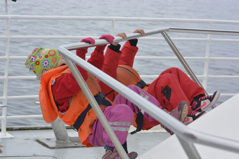 Kid friendly Whale Watching Tour in Akureyri, Iceland
