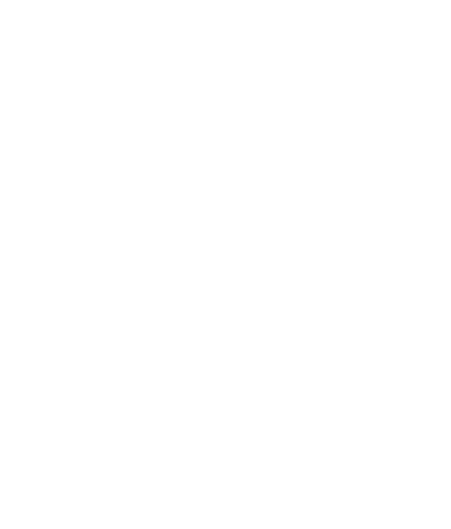 Statera Foundation