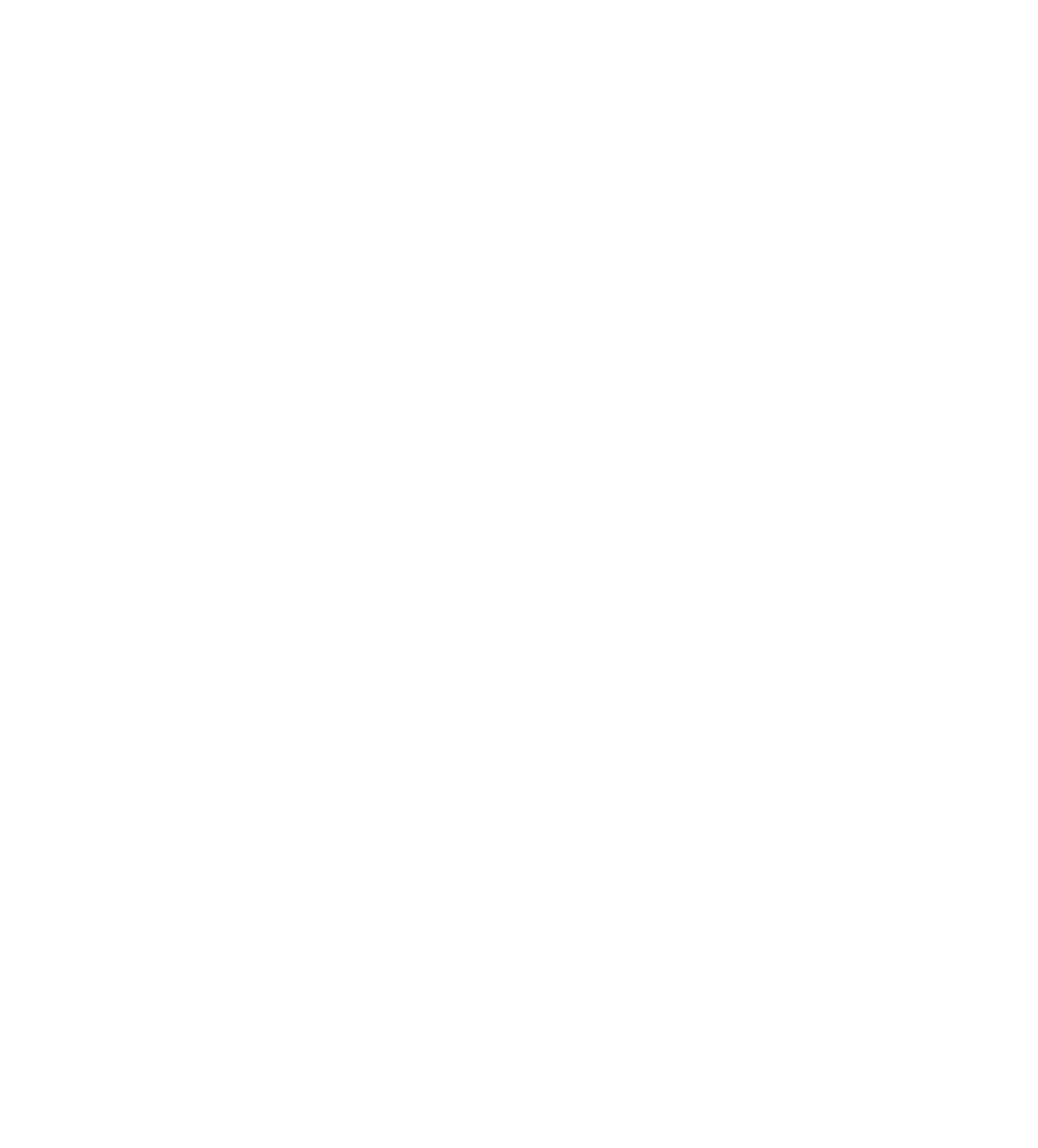 StateraArts