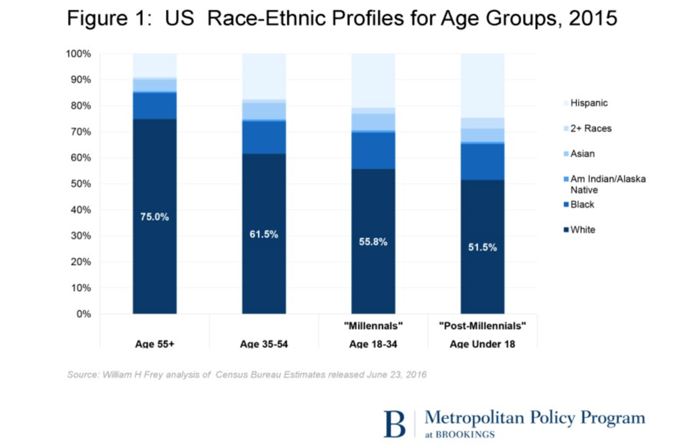 Figure 5: US Race-Ethnic Profiles for Age Groups, 2015 (from the Brookings Institution)
