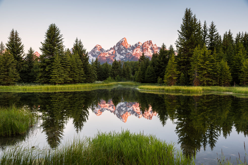Mountain glow at Schwabacher Landing on our last morning in Grand Teton.