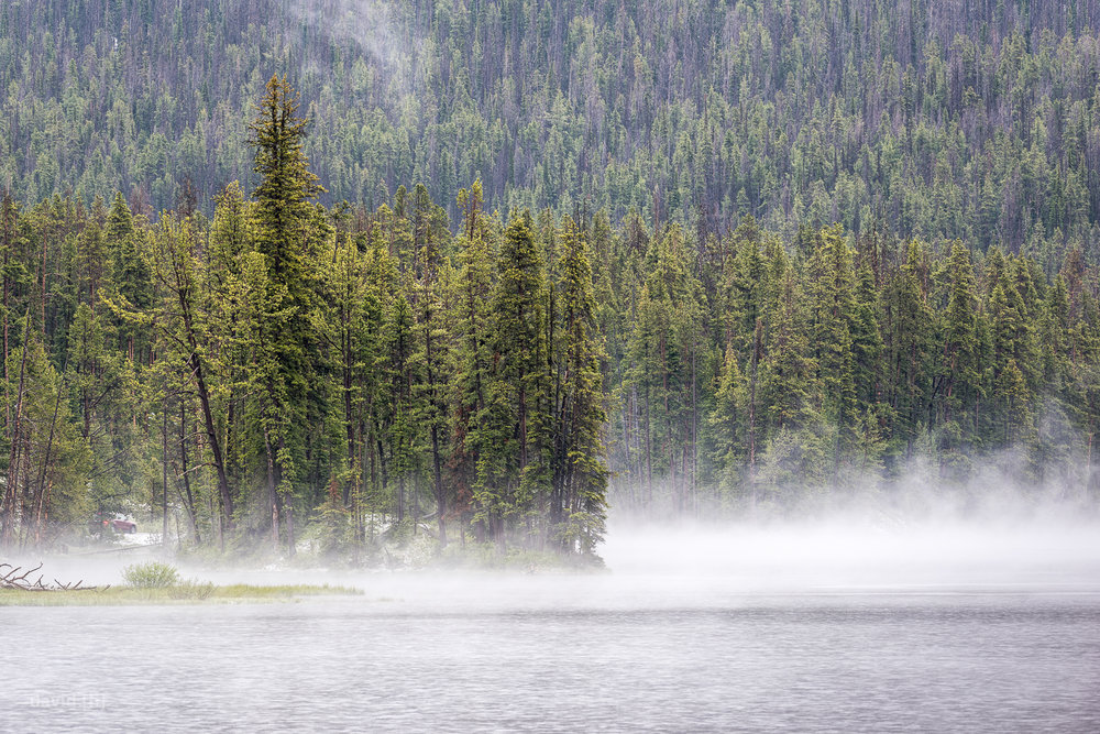 The cold weather and rain transformed some of Yellowstone's landscapes into scenes right out of a fairy tale, such as Sylvan Lake close to Sylvan Pass!
