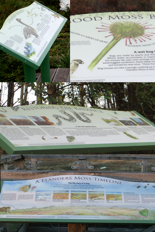 flanders-moss-interpretation-panels.jpg