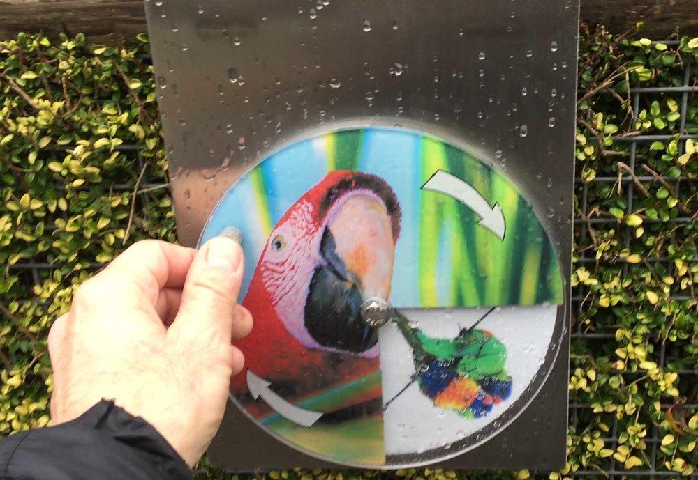 aviary-interactive-2.jpg