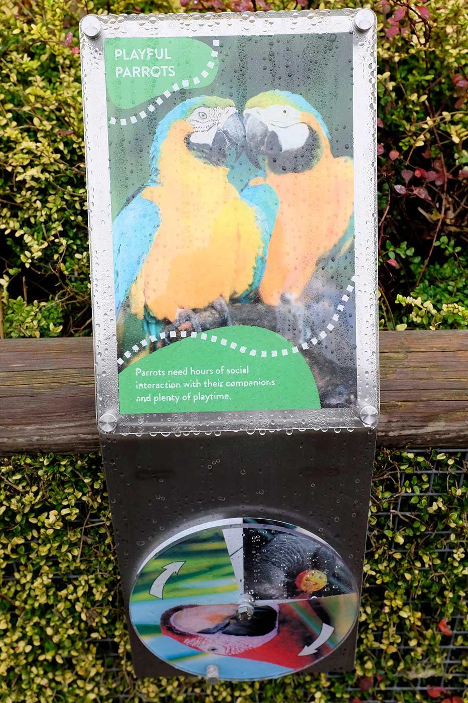 aviary-interactive-6.jpg