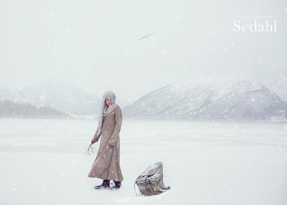 Med rot i det samiske vinterland