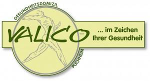 VALICO-Logo-für-shoes4africa-300x162.jpg