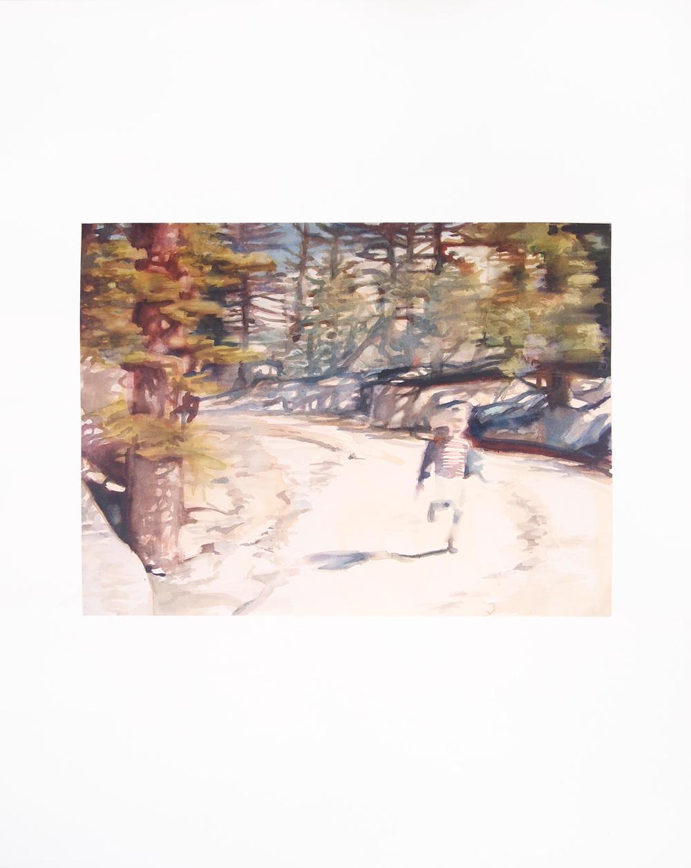 Image (Yellowstone). 2014. Watercolor. 67cm x 84.5cm.
