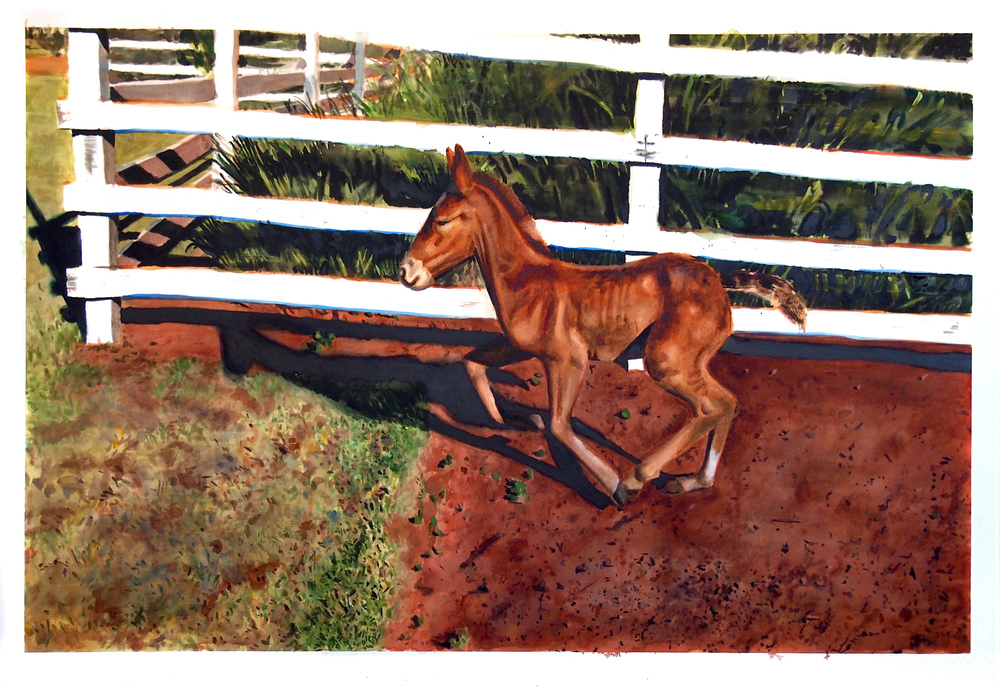 Mule. 2015. Watercolor. 96cm x 140cm.
