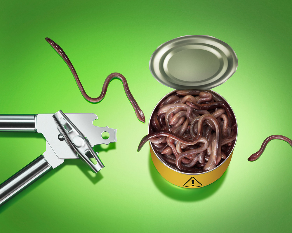Can-of-Worms-15.jpg