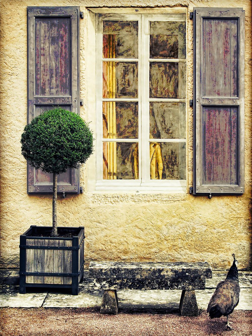 Window-25.jpg
