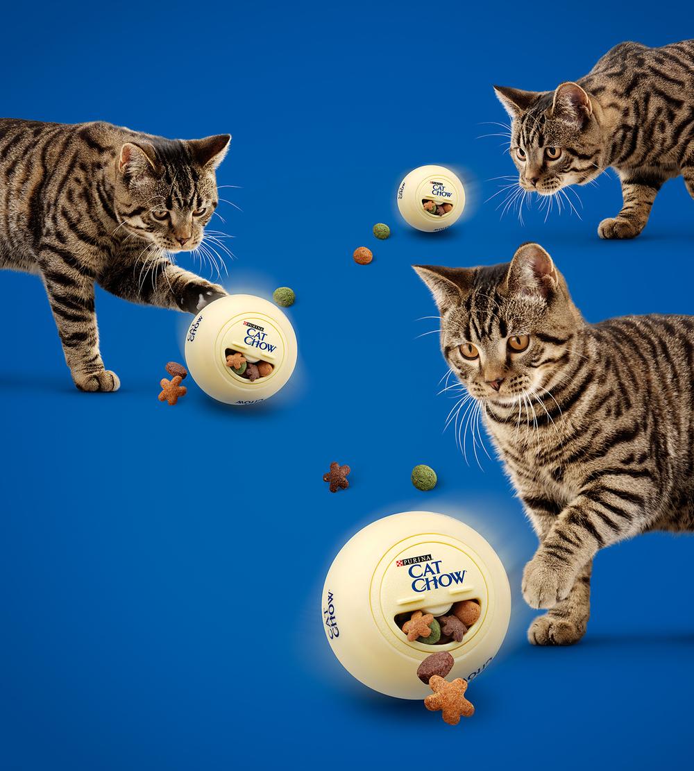 Purina-Cat-Chow-Kibble-Ball.jpg
