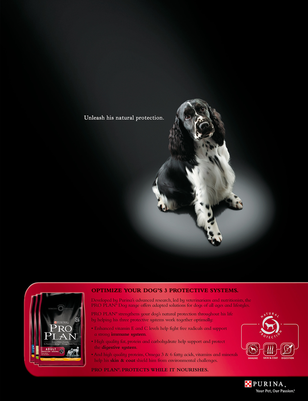 Purina-Springer_Ad.jpg