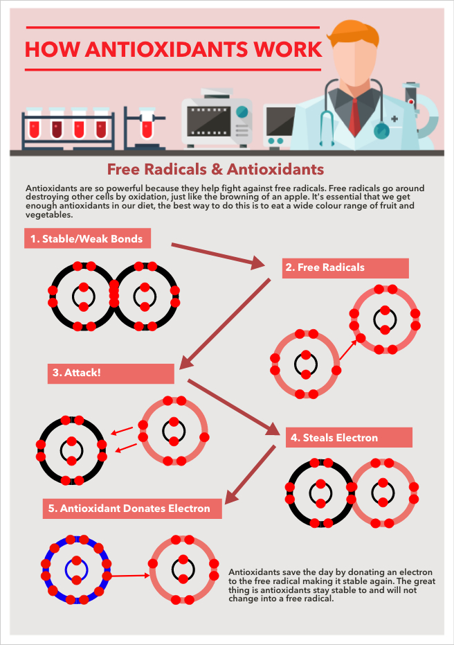 How antioxidants work (1).jpg