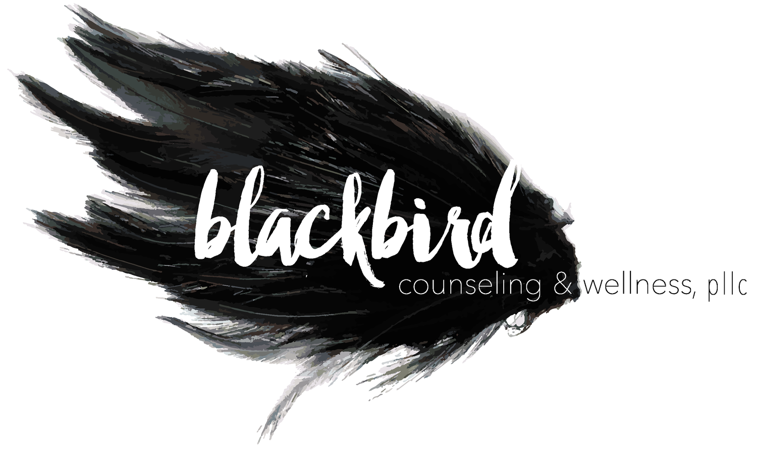 Blackbird Counseling & Wellness San Antonio