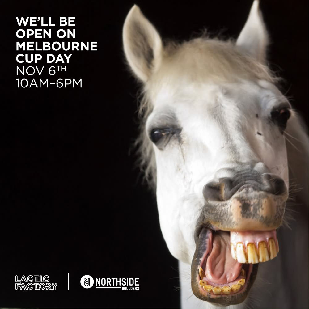 MelbCup2018OpeningHours.jpg