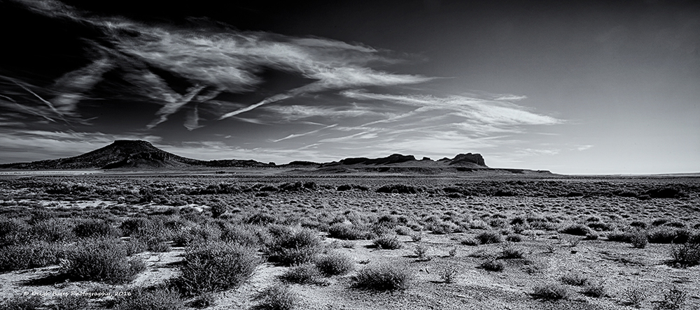 """Dancing Desert"" by Deigh Bates"