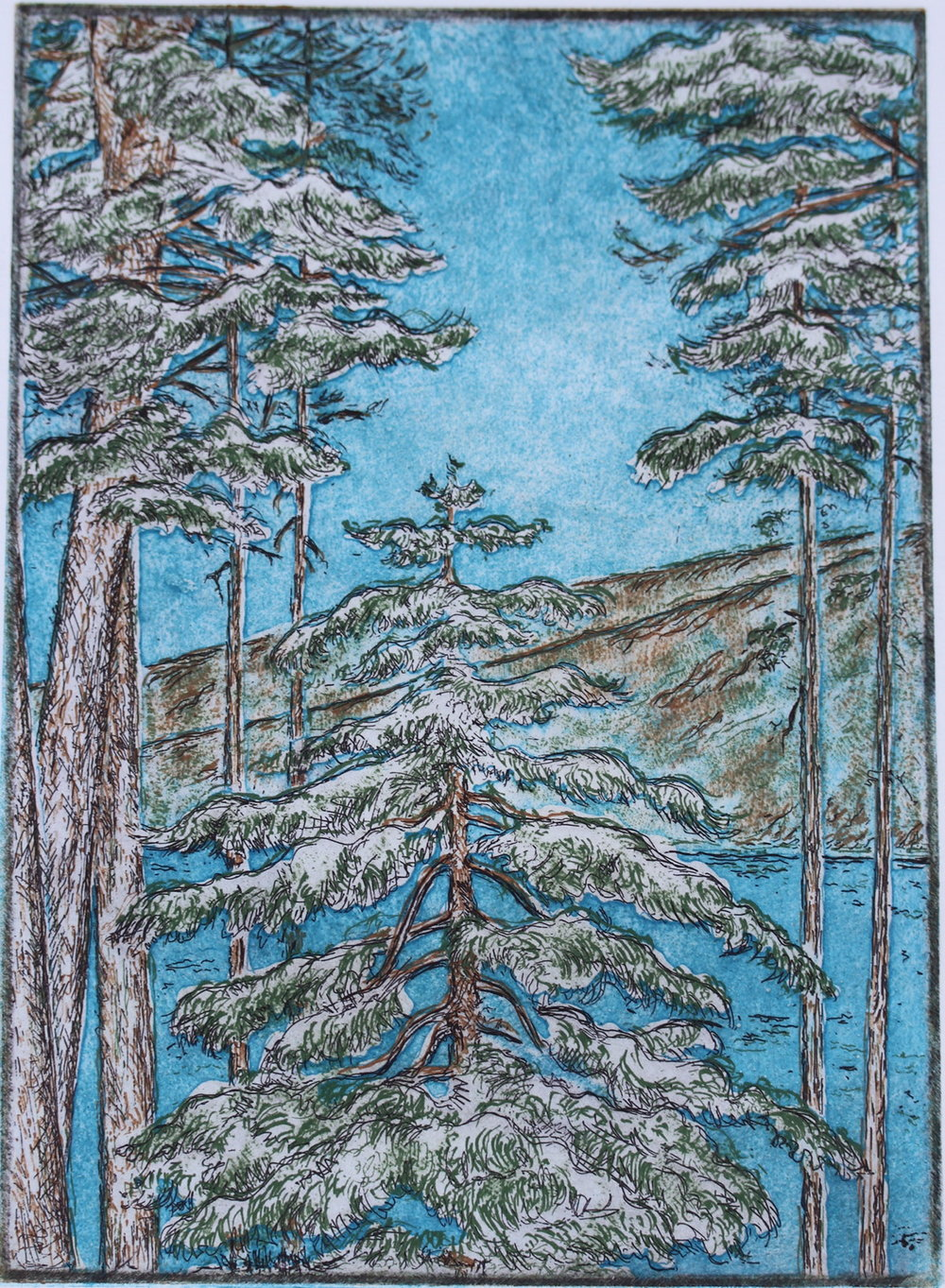 Lynn lake trees etching.JPG