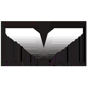Weinstein_logo.png