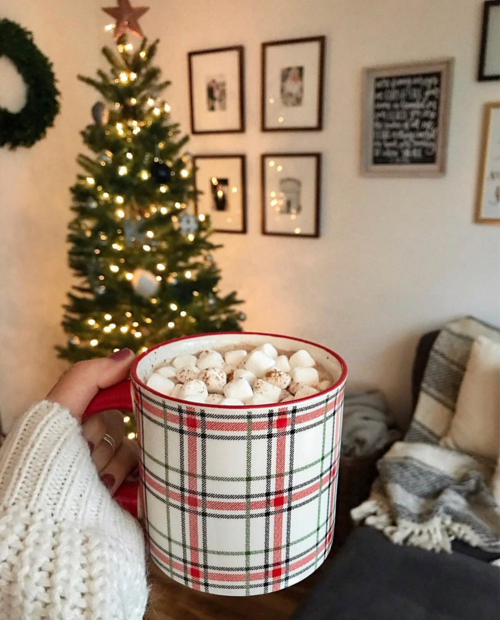 Bre Sheppard Holiday 2018 Cocoa .jpg