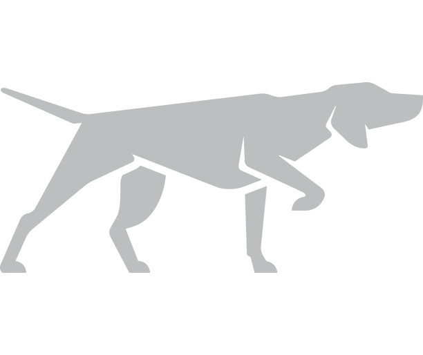 Dog logo clear.png
