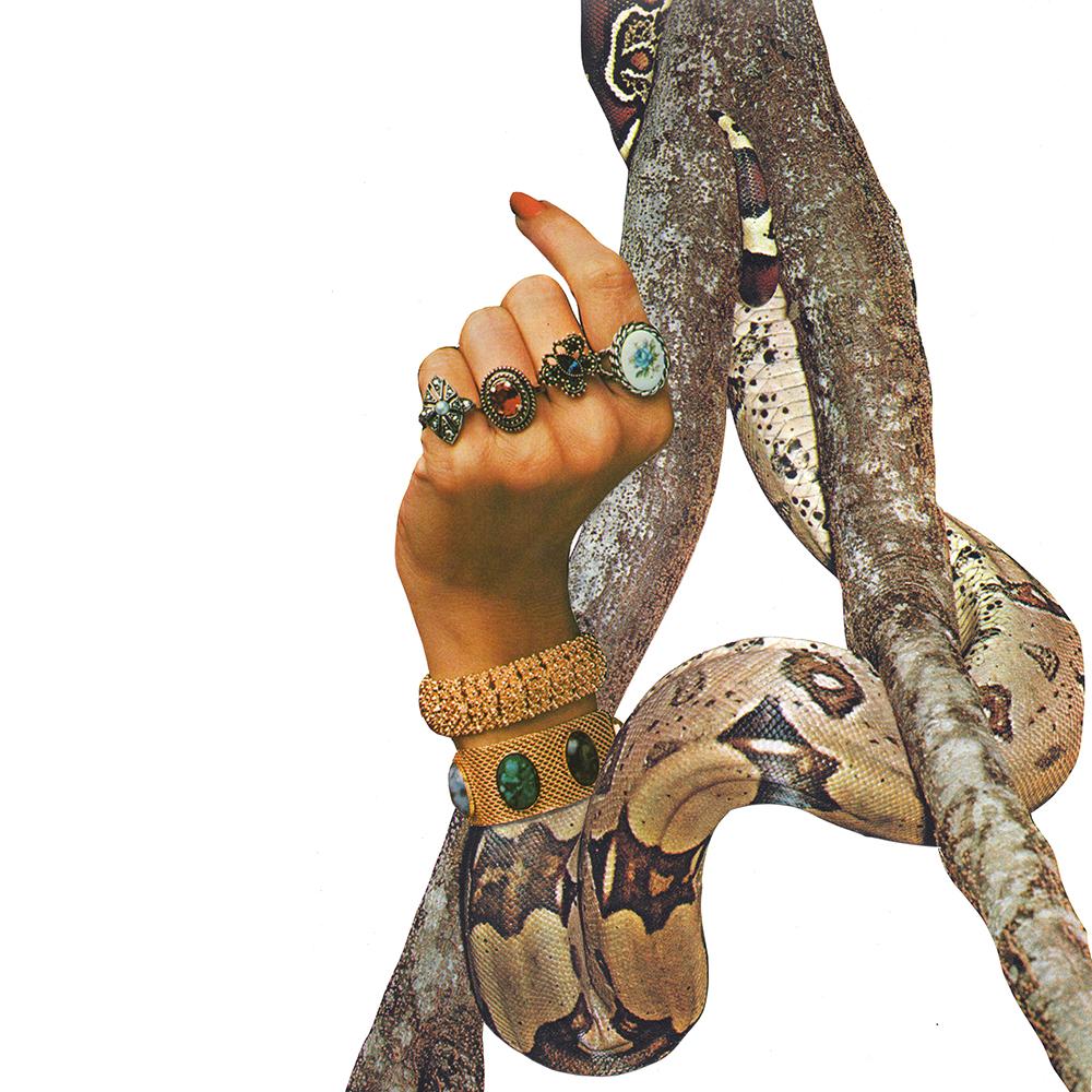 Hand Collage.jpg