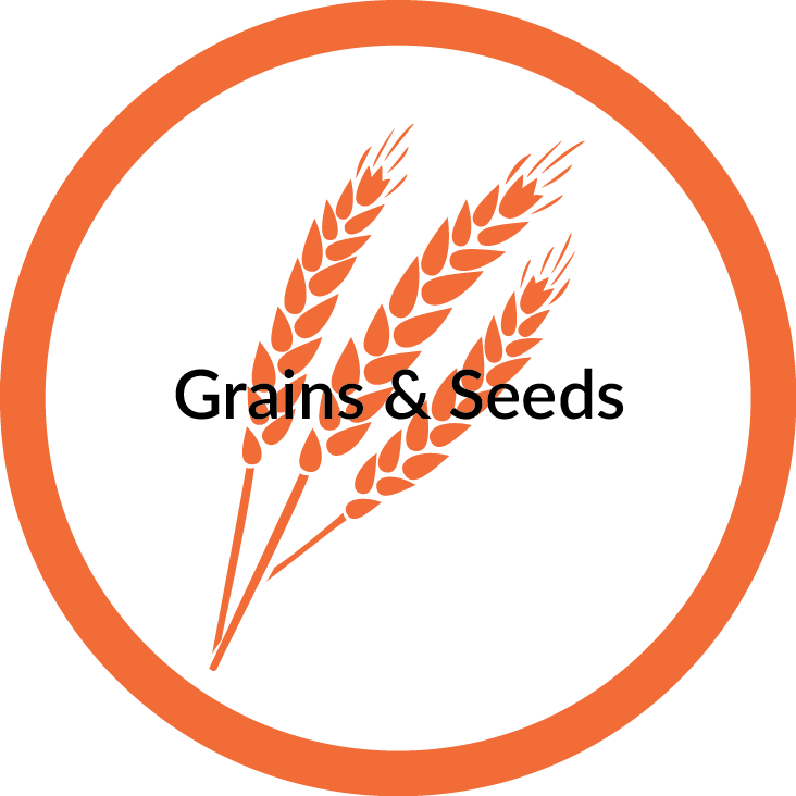 Grains+Seeds.png